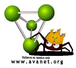 www.avanet.org